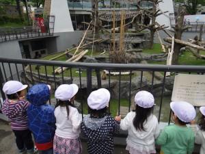 8.Maruyama Zoo Trip-2
